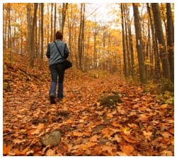 Person walking in a forest during fall with leaves covering the ground