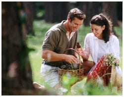 A couple with a basket picking vegetables