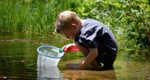 Boy kneeling in water with a fishing net.