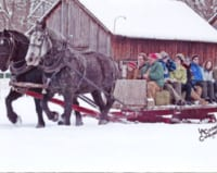 Two horses pulling a sleigh carrying people in winter